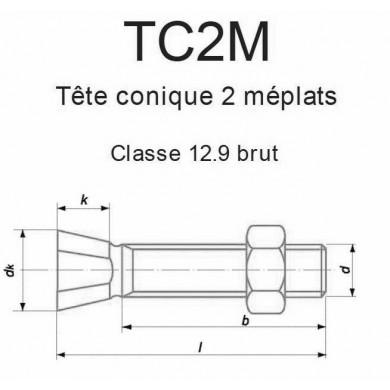 BOULON T. CONIQUE FRAISÉE 2 MÉPLATS ACIER BRUT CL. 12.9