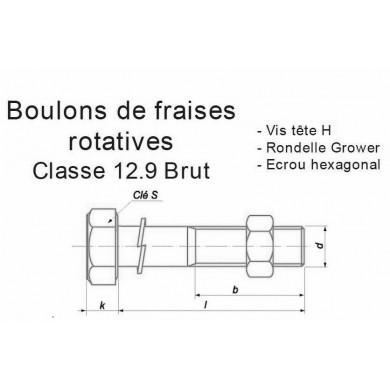 BOULON FRAISE ROTATIVE AGRICOLE CLASSE 12.9 ACIER BRUT